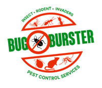 Bug Buster International Logo